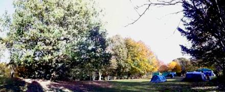 Camping Field W